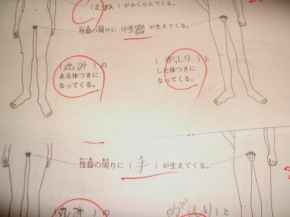 性器が生えてきたり、手が ... : 漢字テスト 問題 : 漢字